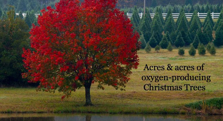 Web---environment-acres-2